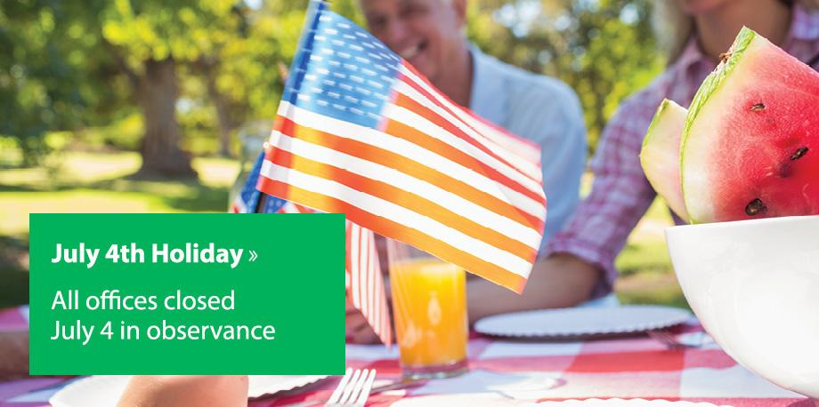 July 4th Flag-Picnic